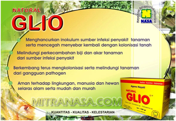 Natural Glio Gliocladium Mitra Nasa