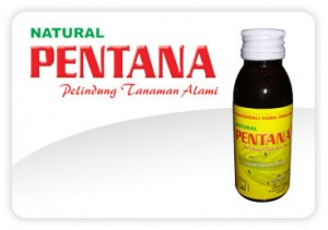 Natural PENTANA Mitra NASA