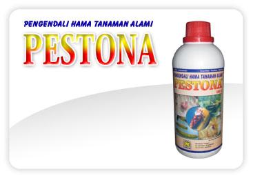 PESTONA Mitra Nasa