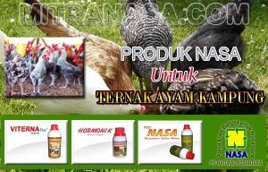 Produk Nasa Untuk Ternak Ayam Kampung