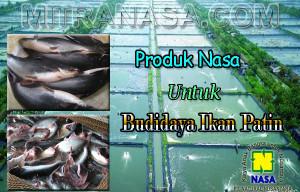 Produk Nasa Untuk Budidaya Ikan Patin