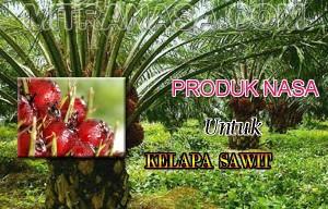 Produk Nasa Untuk Kelapa Sawit