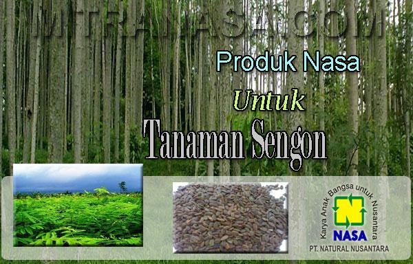 Produk Nasa Untuk Budidaya Tanaman Sengon