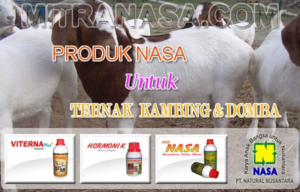 Produk Nasa Untuk Ternak Kambing
