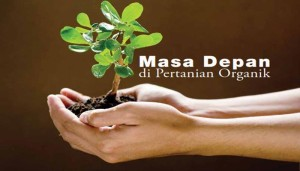 pupuk organik pertanian indonesia
