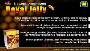 Brosur Natural Royal Jelly