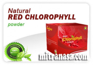 Natural Red Chlorophyll Mitra Nasa