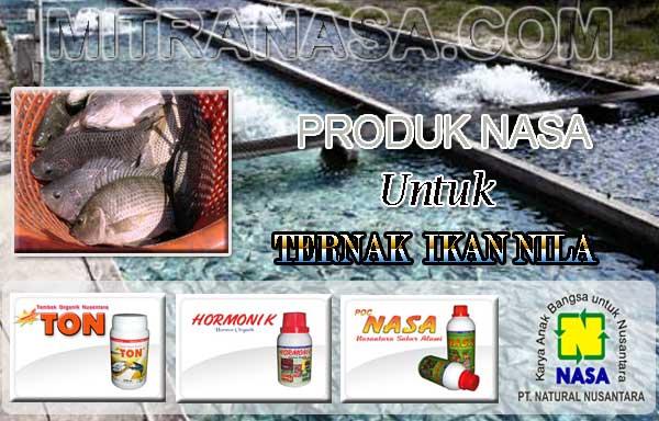 Produk Nasa Untuk Meningkatkan Hasil Ternak Ikan Nila