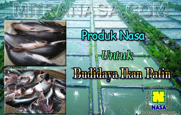 Aplikasi Produk Nasa Untuk Budidaya Ikan Patin