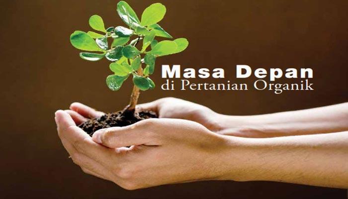 Pertanian Indonesia dan Pupuk Organik