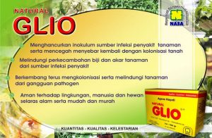 vidio-testimoni-natural-glio-nasa
